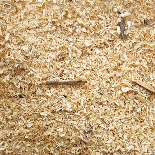 sawmill dust