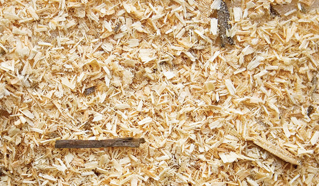 wood texture sawmill residue